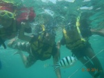 Garis cs underwater 2.jpg