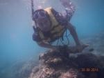 garis underwater 4.jpg