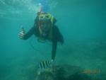 Haymien underwater.jpg